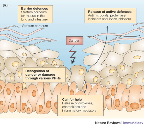 asthma and eczema